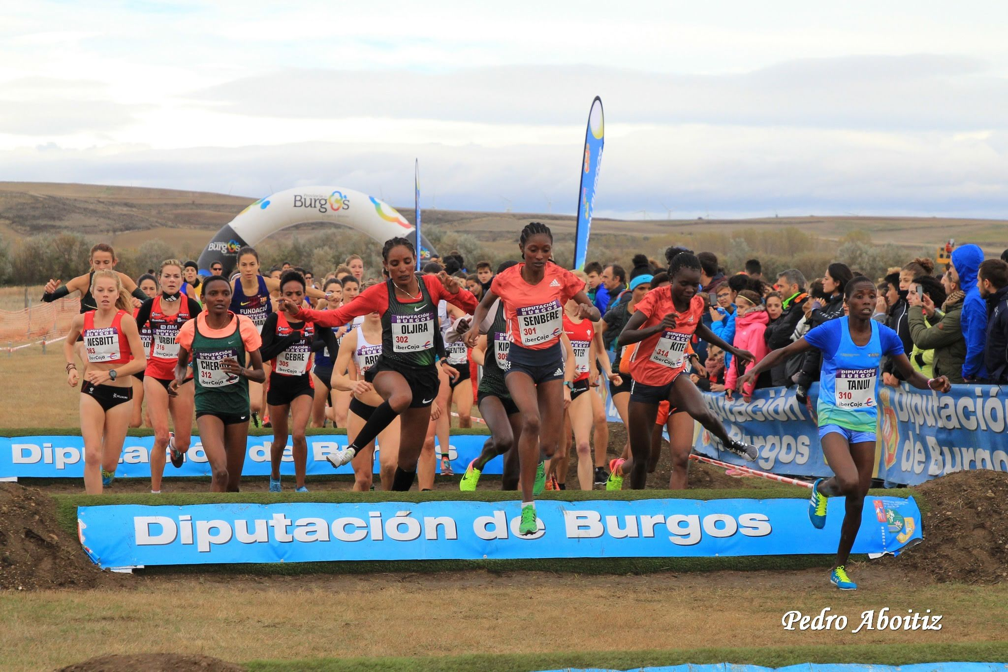 xv-cross-internacional-de-atapuerca